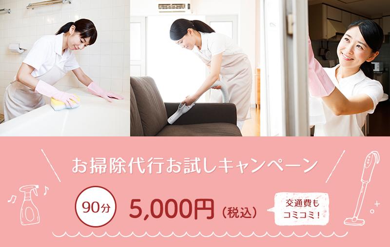 仙台のお掃除代行_カジラクダ